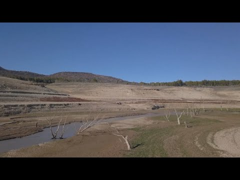 Fighting Desertification In Spain: The Battle Is On