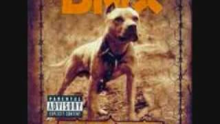 dmx dog intro