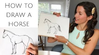 How to draw a horse standing for beginners