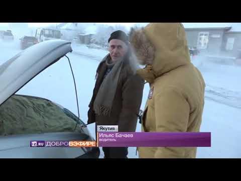 Насколько жесткий Северный полюс и как на нем выживают люди