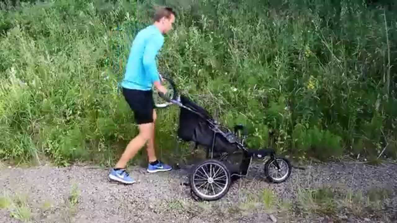 beemoo joggingvagn sport kombo