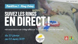 Ring Ovins/ Caprins 24/02/2019