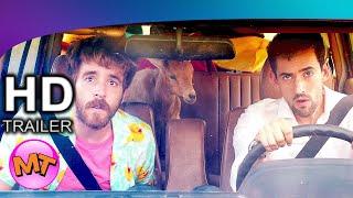 Medios Hermanos Trailer 2020 Subtitulado Youtube