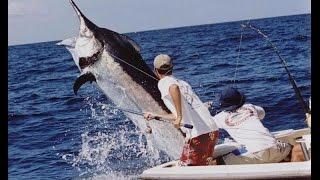Ловля Марлина в Индийском океане