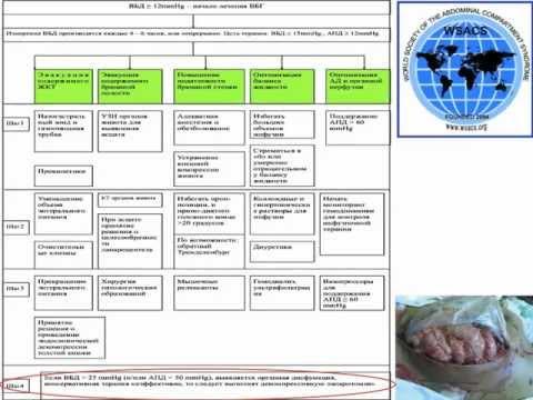 синдром системной воспалительной реакции — Викисловарь