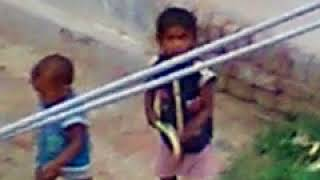 Funny video plz like & suscribe my chennal