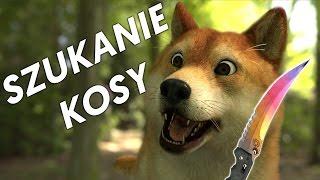 SZUKANIE KOSY ft. KIFI