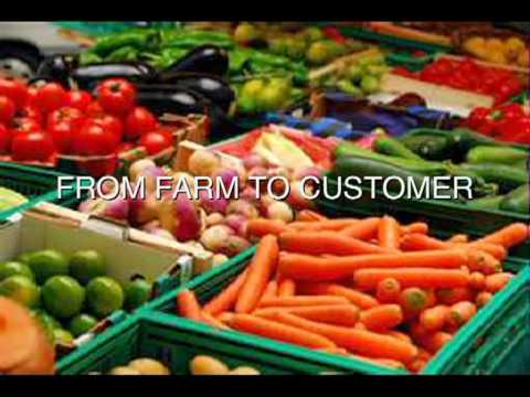 """Intro To Holistic Organic Foods in Houston, Texas-Better Than """"Just"""" Organic"""