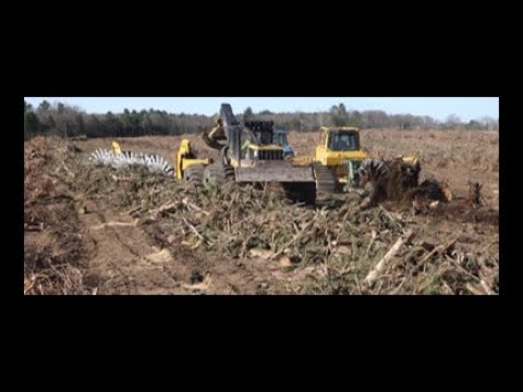 SAVANNAH LAND CLEARING: STUMP PULLING, ROTARY RAKING OFFSET DISKING FOR TIMBER TO FARM AND SOLAR