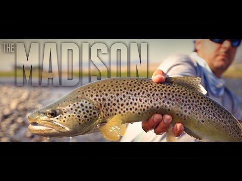 Epic Montana Trout Rivers - THE MADISON