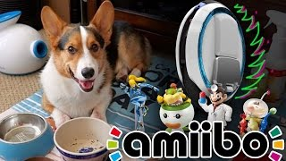 NINEBOTS, AMIIBO HUNTS, and a CORGI PUPPY HAUL - Life After College: Ep. 437 thumbnail