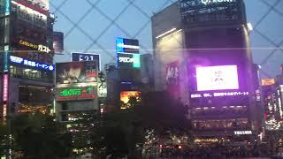 Путешествие в Японию - Токио, апрель 2018 / Видео