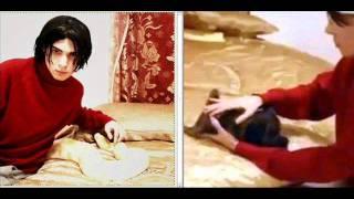 Re Luka Magnotta Feeds Kitten Python