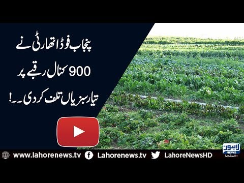PFA disposes off crop prepared with poisonous industrial water