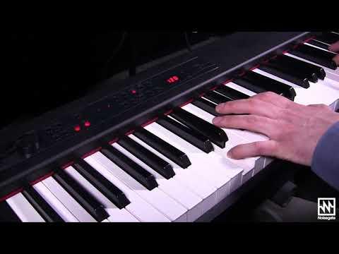KORG D1: Portable Digital Piano