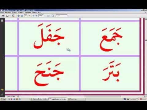 arabisch dattel 5 buchstaben
