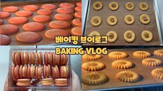 선물용 쿠키 준비하는 베이킹 브이로그 | 로미아스 쿠키…