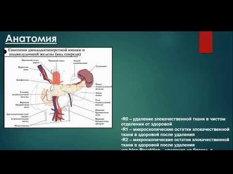 Кудашкина А.С. «МРТ в оценке резектабельности рака поджелудочной железы»