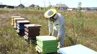Как делают крем-мёд в Разумном