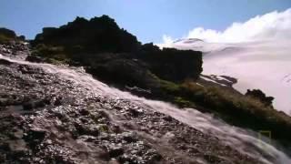Science & Nature Documentary Underwater Earth 1080p National Geographic Documentary
