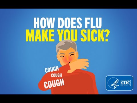 How you can Fight influenza This Year
