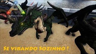 Ark Survival Evolved MODS #EP 3 - Se Virando Sozinho !
