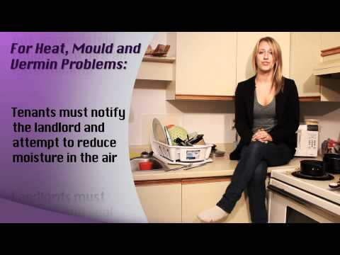 Heat, Vermin, and Mould - Municipal Affairs Housing Videos