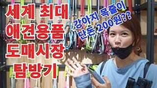 [시장탐방] 이우시장 나홀로 탐방기/애견용품의 충격적인…