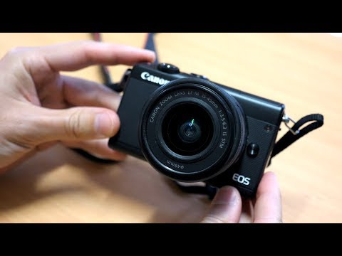 Canon M100 - Review and Sample Photos