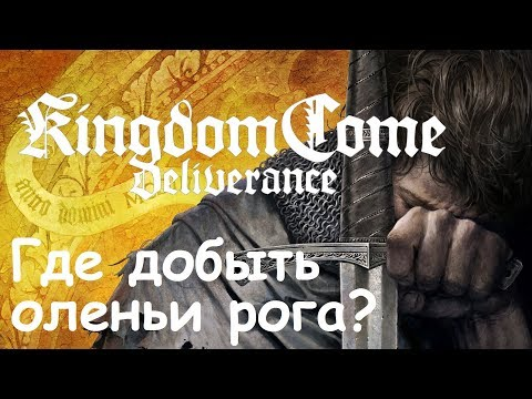 Kingdom Come: Deliverance Где добыть оленьи рога?