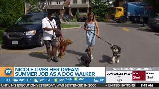 BT Summer Jobs: Nicole is a dog walker!