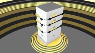 Размеры 10-рамочного улья Дадан