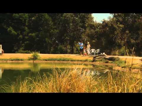 Places We Go - Phillip Island Pt. 1 | Subaru Australia