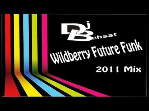 DjBehsat - Wildberry Future Funk 2010 Mix