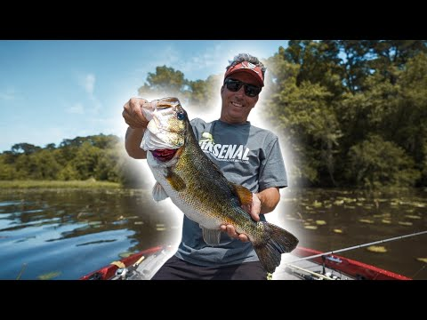 Some Lake Talquin Bass Action | Giveaway!