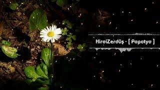 Hirai Zerdüş - Papatya Resimi