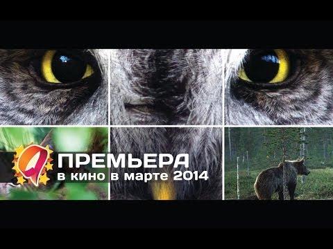 Афиша Йошкар-Ола :: Кинотеатр Октябрь - расписание сеансов