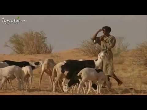 تينيلان..أعماق  البادية الموريتانية