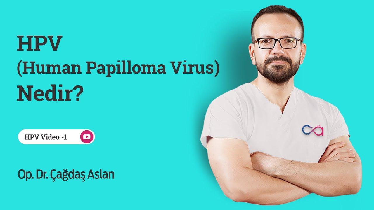 human papilloma virus erkek)