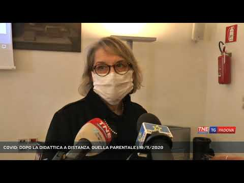 COVID: DOPO LA DIDATTICA A DISTANZA, QUELLA PARENTALE | 19/11/2020
