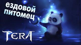 TERA online - Панда (ездовой питомец)
