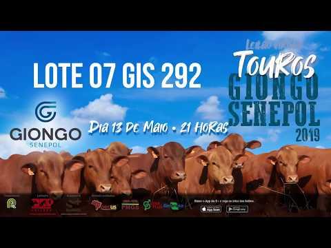LOTE 07 GIS 292