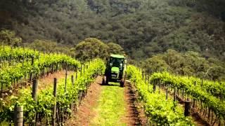 NSW Dept Environment Vineyard