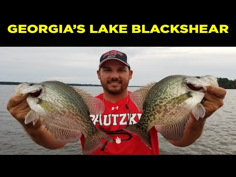 Summer And Fall Crappie Fishing On Lake Blackshear