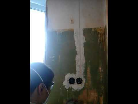 снятие масляной краски со стен.Bosch GBR 15 CAG