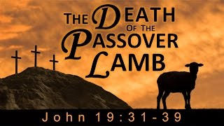 The Death of the Passover Lamb (John 19:31-39)