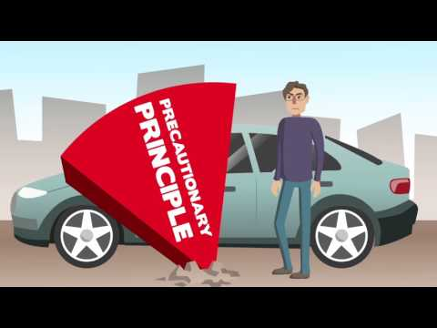 The Precautionary Principle - Climate Change Debate Animation