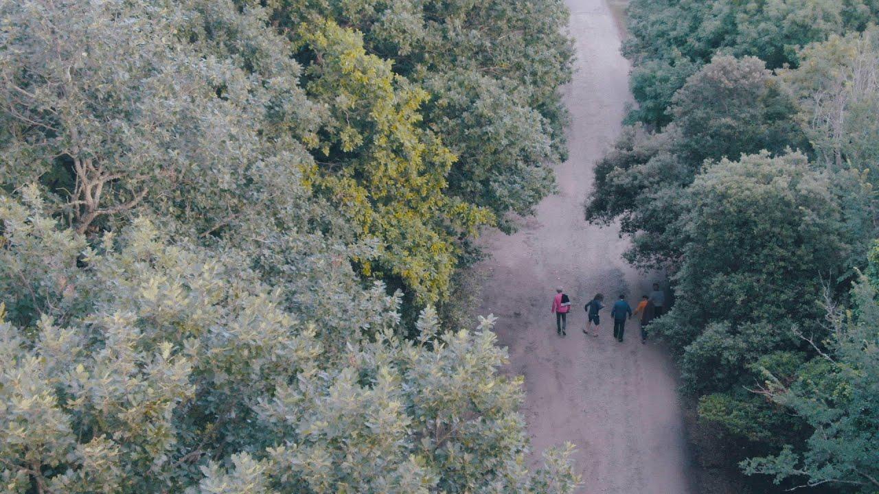 The Volunteered Slaves | SpaceShipOne - Single (Official Trailer)