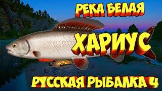 русская рыбалка 4 Хариус река Белая рр4 фарм Алексей Майоров russian fishing 4