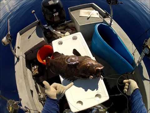 Guam Deep Bottom Fishing 1st Gadao